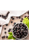 Acai Berries & Satin Fragrance Oil