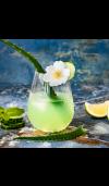 Aloe Water & Jasmine - Natural Fragrance Oil