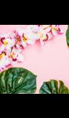 Aloha Orchid* Fragrance Oil