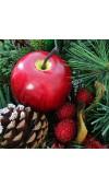 Apple Balsam Pine Fragrance Oil