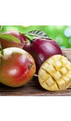 Apple Mango Tango Fragrance Oil