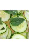 Cucumber Mint Fragrance Oil