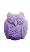 Woodland Owl Soap Mold (Milky Way)