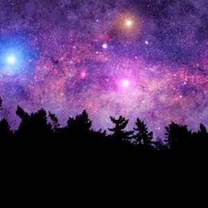 Beneath the Stars Fragrance Oil