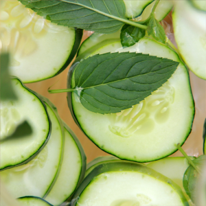 Cucumber Mint Fragrance Oil