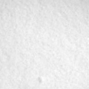 Dendritic Salt