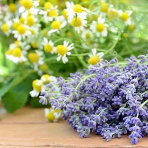 Lavender Chamomile Fragrance Oil