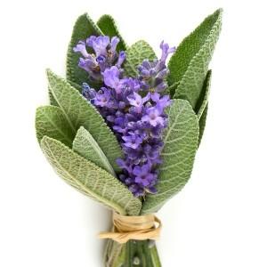 Lavender Sage* Fragrance Oil