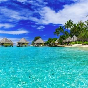 Meet Me In Tahiti* Fragrance Oil