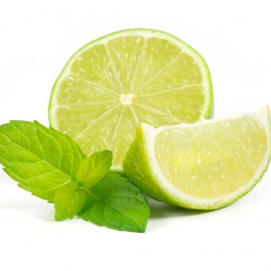 Minty Lime Lip Balm