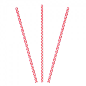 Paper Straw - Red Gingham
