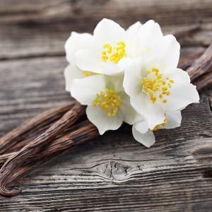 Vanilla Oak Fragrance Oil
