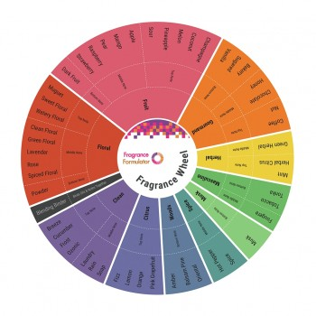 Fragrance Wheel - Blending Card #1