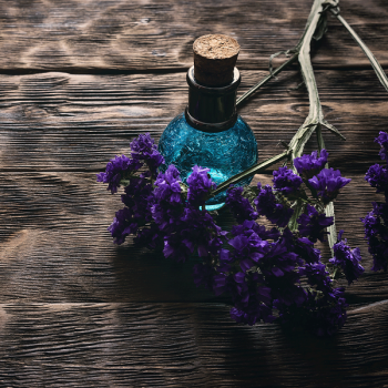Essence of Nightshade Fragrance Oil