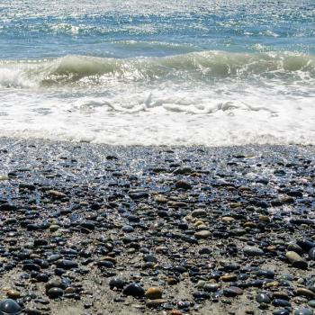 Sea Minerals & Oud Fragrance Oil